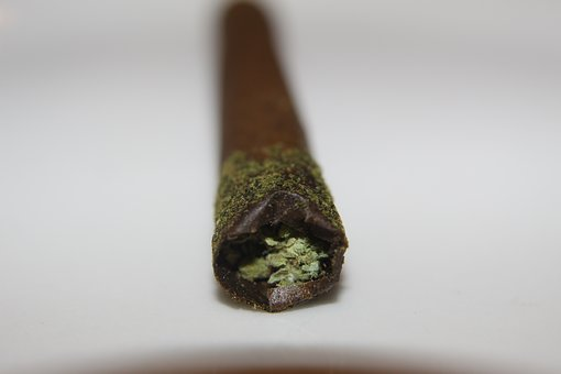 Joint Rolling Guide