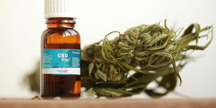 Bring Joy to Cooking with this Secret Kitchen Ingredient – Cannabis Oil