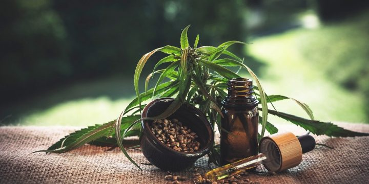 7 Things You Need to Know About CBD Oil Before You Buy