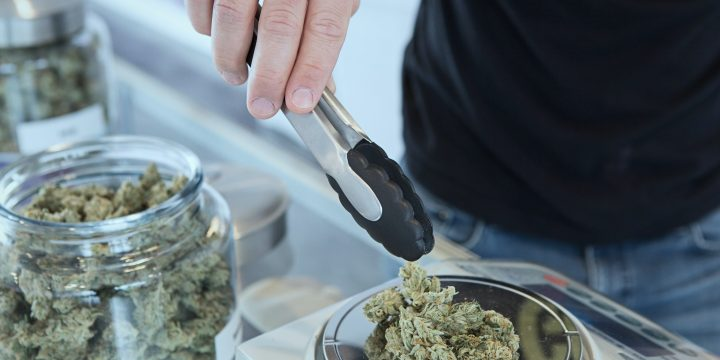 Recreational vs. Medical Marijuana in Washington State