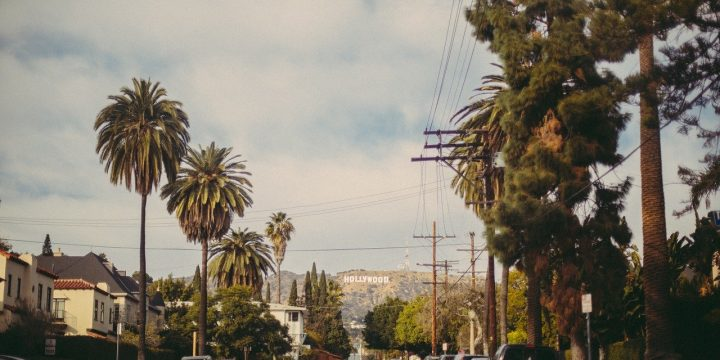 Check Out These Strains When Visiting a Los Angeles Dispensary