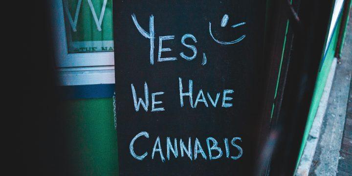 5 Cannabis-related Career Paths