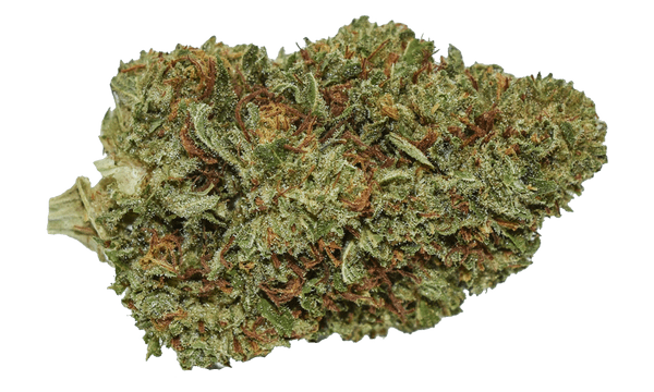 Know More About Types of CBD Flower and Buds Before You Shop