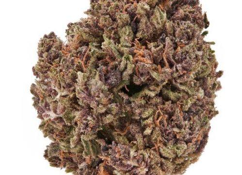Reasons To Smoke CBD Flower