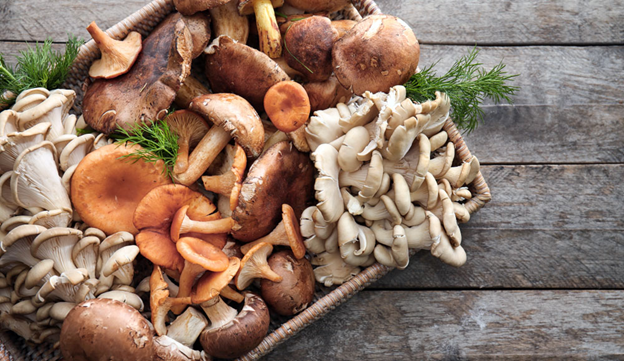 Amazing Benefits of Organic Mushrooms
